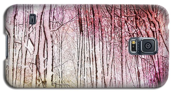 Sunset Snow Twigs Galaxy S5 Case by Kathi Mirto