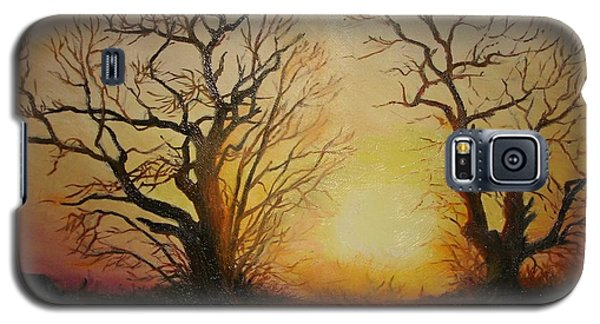 Galaxy S5 Case featuring the painting Sunset by Sorin Apostolescu