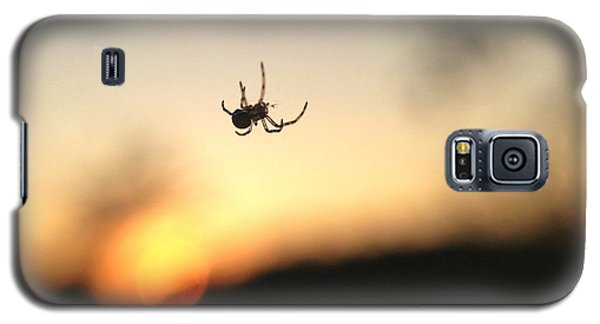 Galaxy S5 Case featuring the photograph Sunset Spidey by Nikki McInnes