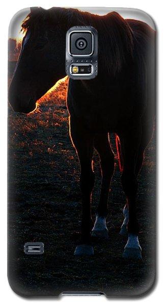 Galaxy S5 Case featuring the photograph Sunset Splendor by Robert McCubbin