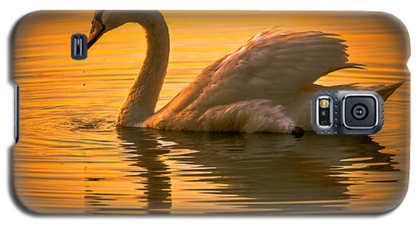 Sunset Swan Galaxy S5 Case