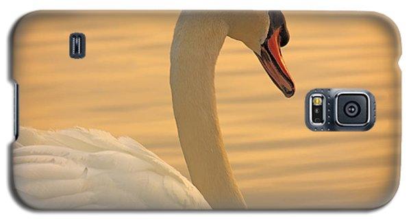 Sunset Swan Galaxy S5 Case