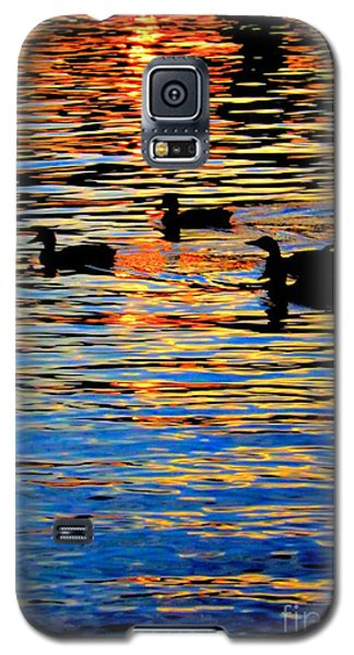Sunset Swim Galaxy S5 Case by Robyn King