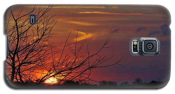 Sunset Through The Branches Galaxy S5 Case by Lynda Dawson-Youngclaus