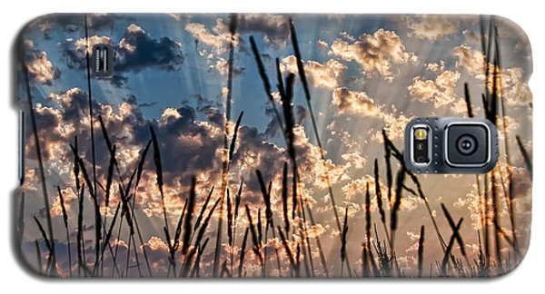 Galaxy S5 Case featuring the photograph Sunset Through The Grasses by Don Schwartz
