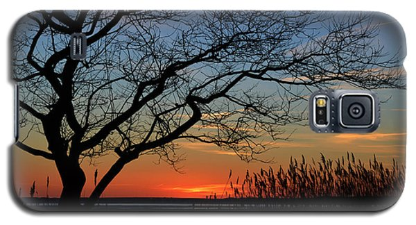 Sunset Tree In Ocean City Md Galaxy S5 Case