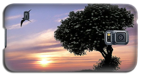 Sunset Tree Of Tranquility Galaxy S5 Case