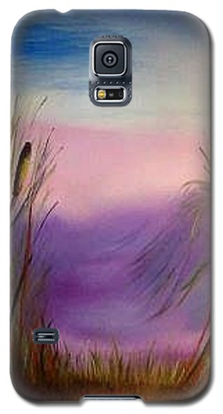 Sunset Galaxy S5 Case by Valorie Cross