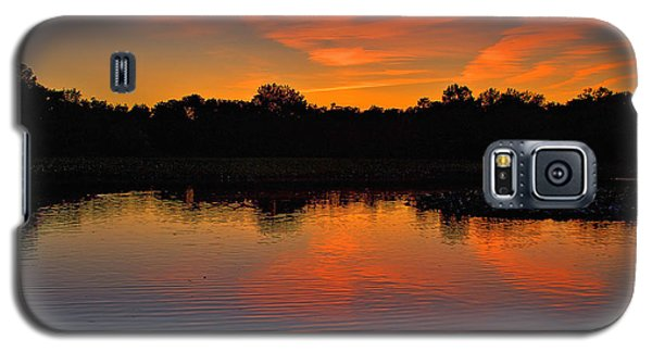Sunset With Swan Galaxy S5 Case