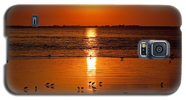 Galaxy S5 Case featuring the photograph Sunset With The Birds Photo by Meg Rousher
