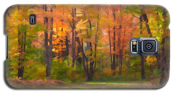 Sunshine At The Curve Galaxy S5 Case by Susan Crossman Buscho