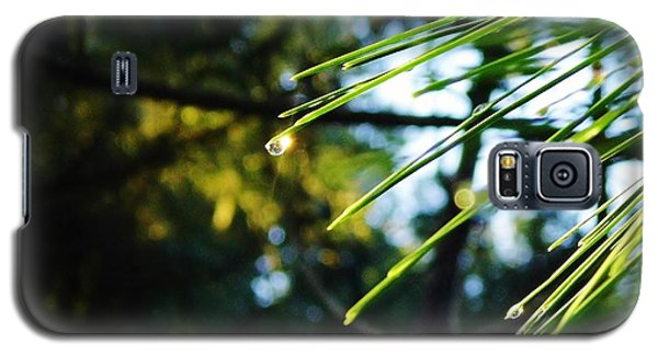 Sunshine Dewdrop Galaxy S5 Case by D Hackett