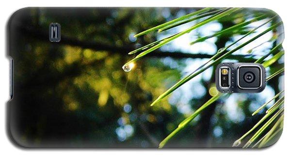 Sunshine Dewdrop Galaxy S5 Case