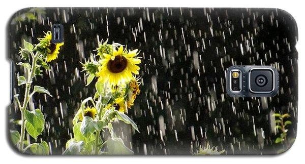 Sunshine In The Rain Galaxy S5 Case by Elizabeth Sullivan