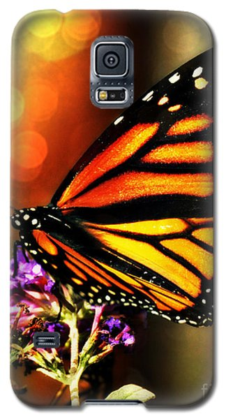 Sunshine Monarch  Galaxy S5 Case by Mindy Bench