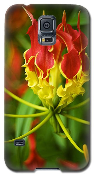 Sunshine On A Cloudy Day Galaxy S5 Case