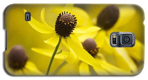 Sunshine On A Cloudy Day Galaxy S5 Case by Penny Meyers