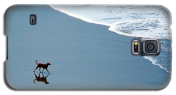 Galaxy S5 Case featuring the photograph Surfer Dog by AJ  Schibig