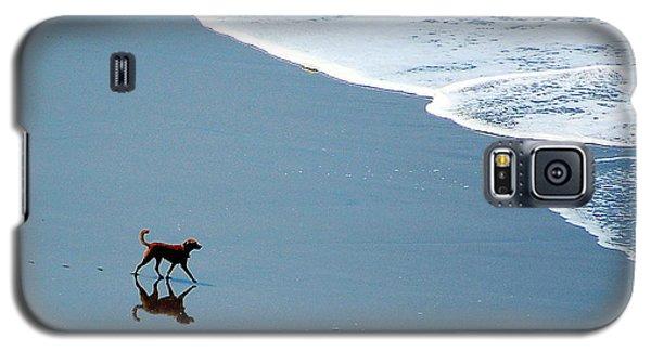 Surfer Dog Galaxy S5 Case