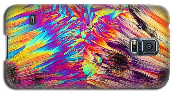 Surfin' Safari Galaxy S5 Case