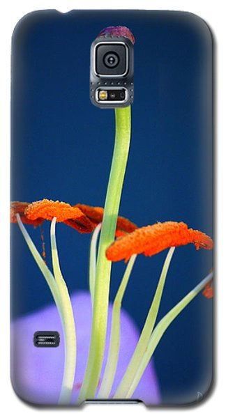 Surreal Inner Beauty Galaxy S5 Case by Patrick Witz