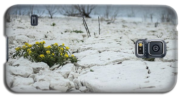 Galaxy S5 Case featuring the photograph Survival by Amber Kresge