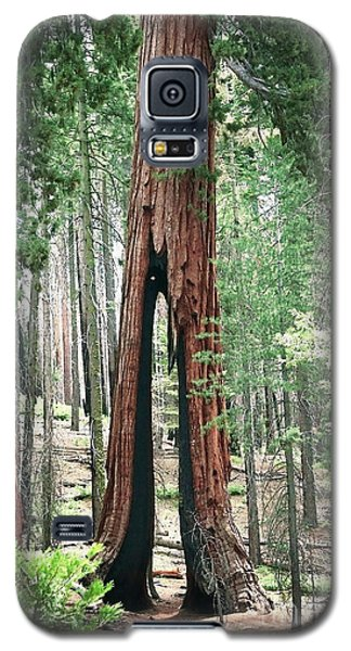 Survivor Galaxy S5 Case