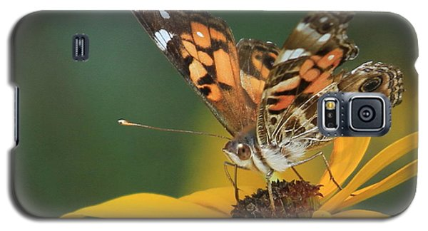 Susan Painted Lady Galaxy S5 Case