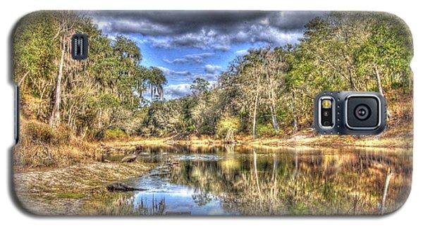 Suwannee River Scene Galaxy S5 Case by Donald Williams
