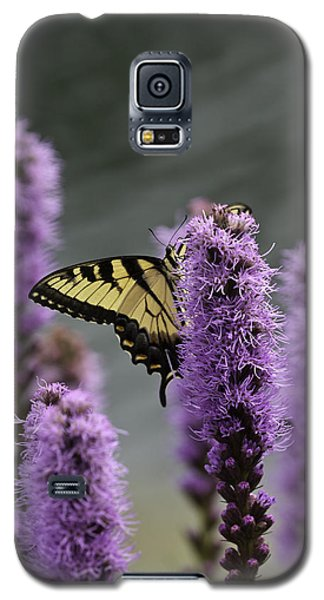 Swallowtail 0003 Galaxy S5 Case
