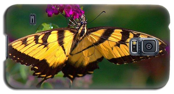 Swallowtail 1 Galaxy S5 Case