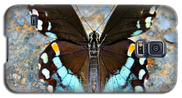 Swallowtail Beauty Galaxy S5 Case