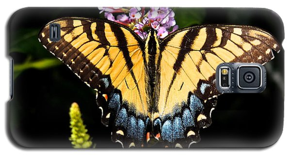 Swallowtail Beauty Galaxy S5 Case by Eve Spring