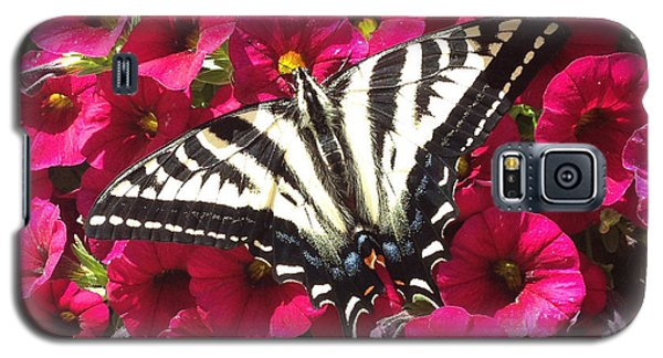 Swallowtail Butterfly Full Span On Fuchsia Flowers Galaxy S5 Case