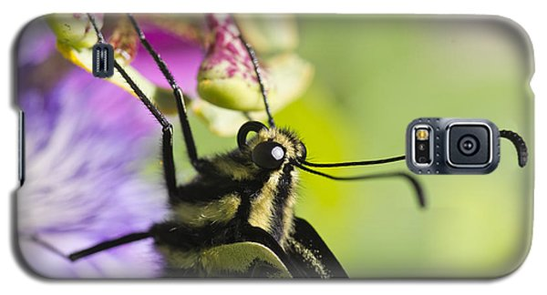 Galaxy S5 Case featuring the photograph Swallowtail Butterfly by Priya Ghose