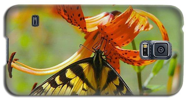 Swallowtail Butterfly3 Galaxy S5 Case by Susan Crossman Buscho
