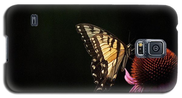 Galaxy S5 Case featuring the photograph Swallowtail In The Light by Elsa Marie Santoro