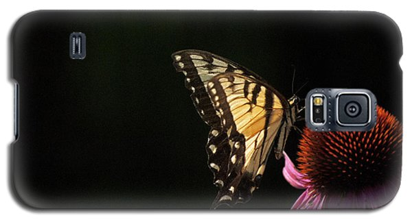Swallowtail In The Light Galaxy S5 Case by Elsa Marie Santoro
