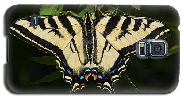 Swallowtail  Galaxy S5 Case