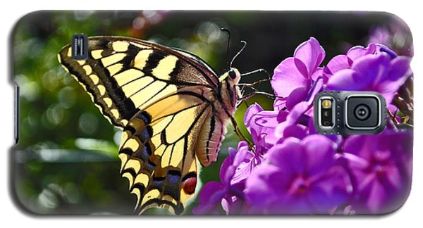 Swallowtail On A Flower Galaxy S5 Case