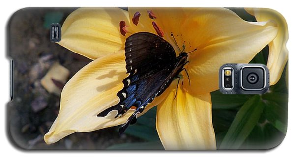 Galaxy S5 Case featuring the photograph Swallowtail On Asiatic Lily by Kathryn Meyer