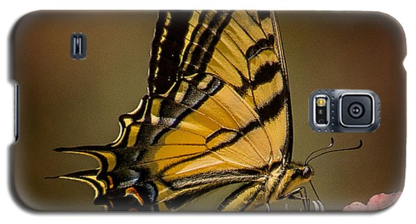 Swallowtail On Milkweed Galaxy S5 Case by Janis Knight