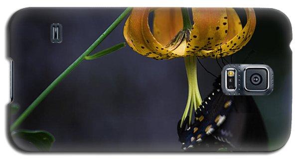 Swallowtail On Turks Cap Galaxy S5 Case
