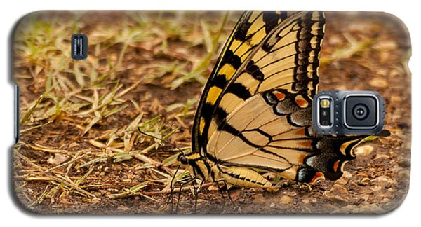 Swallowtail Galaxy S5 Case