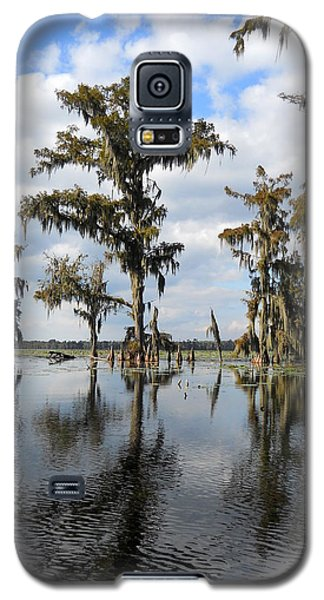 Swamp Galaxy S5 Case by Beth Vincent