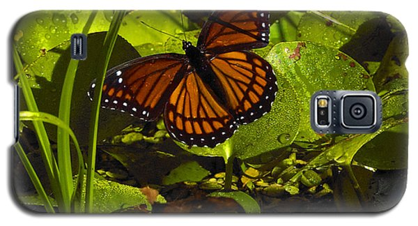 Galaxy S5 Case featuring the photograph Swamp Butterfly by Silke Brubaker