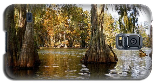 Swamp - Cypress Trees Galaxy S5 Case by Beth Vincent