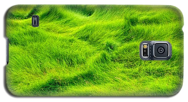 Galaxy S5 Case featuring the photograph Swamp Grass Abstract by Gary Slawsky