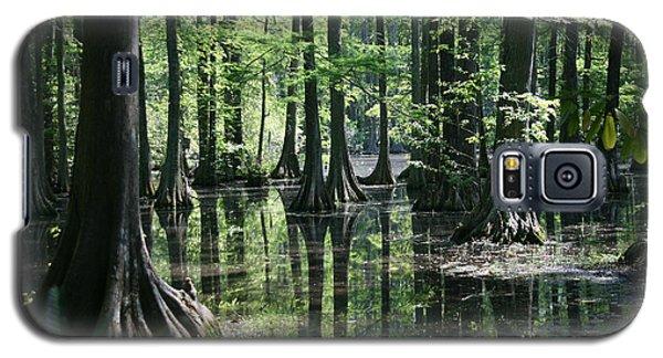 Swamp Land Galaxy S5 Case