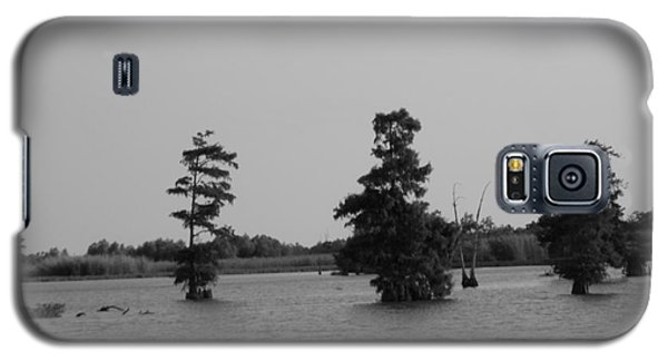 Galaxy S5 Case featuring the photograph Swamp Tall Cypress Trees Black And White by Joseph Baril